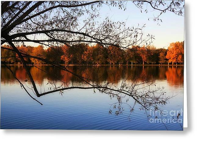 Fiery Colors On The Lake Greeting Card