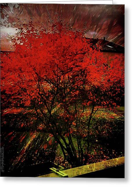 Greeting Card featuring the photograph Fiery Dance by Mimulux patricia no No