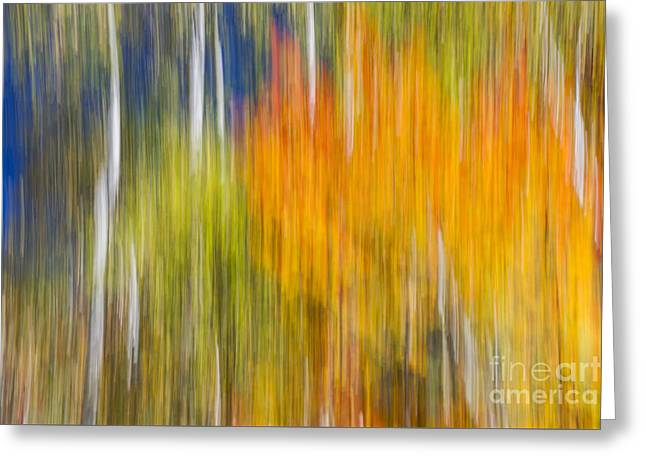 Fiery Fall Greeting Card