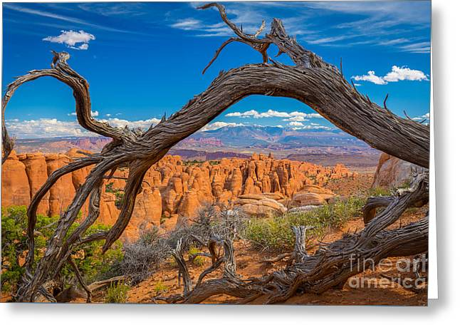 Fiery Furnace Greeting Card by Inge Johnsson