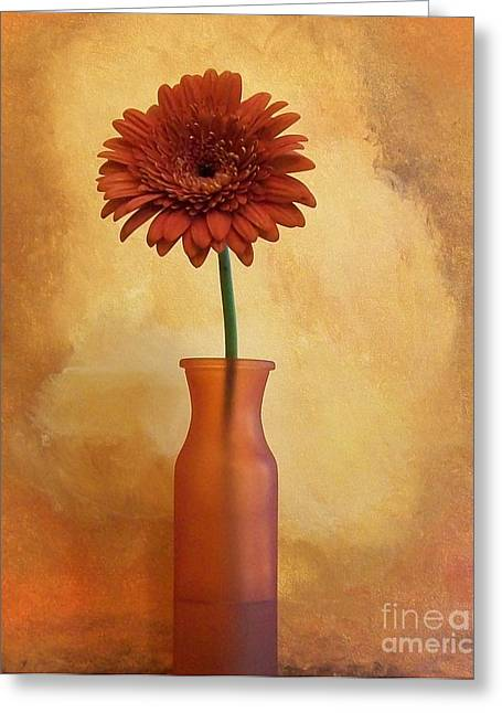 Fiesta Gerber Daisy Greeting Card by Marsha Heiken
