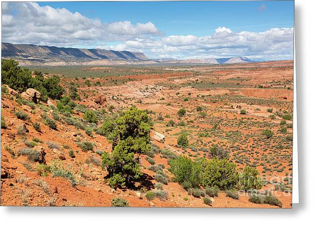 Fiftymile Mountain And Sandstone Hills Greeting Card