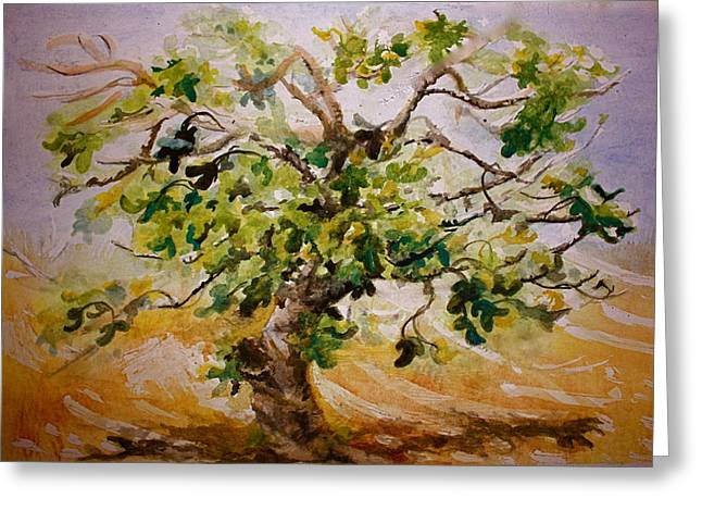 Fig Tree Greeting Card by Yvonne Ayoub