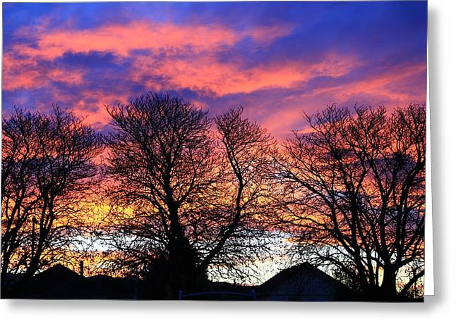 Greeting Card featuring the painting Filigree Sunset by Nareeta Martin