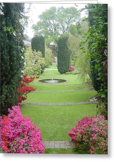Filoli Gardens Greeting Card by Shelley Capovilla