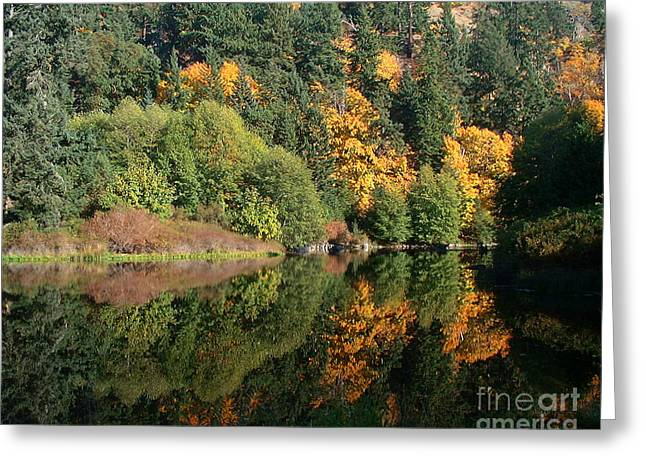 Greeting Card featuring the photograph Final Reflection by Larry Keahey