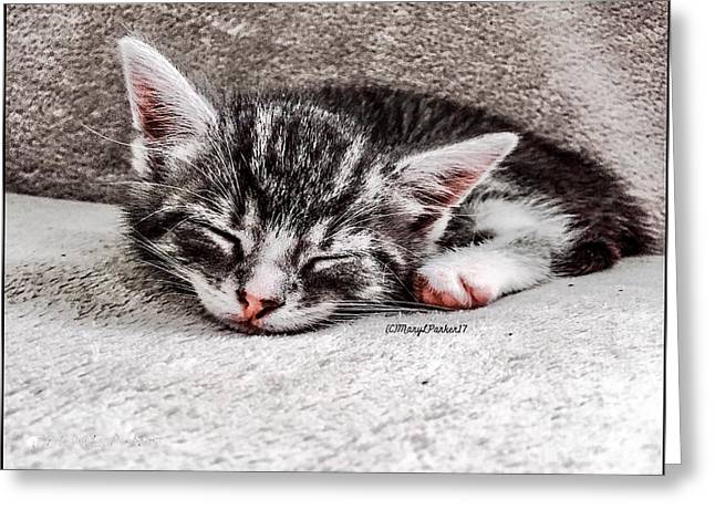 Finally Asleep  Copyright Mary Lee Parker 17  Greeting Card