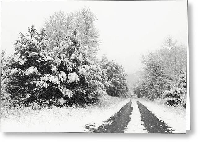 Greeting Card featuring the photograph Find A Pretty Road by Lori Deiter