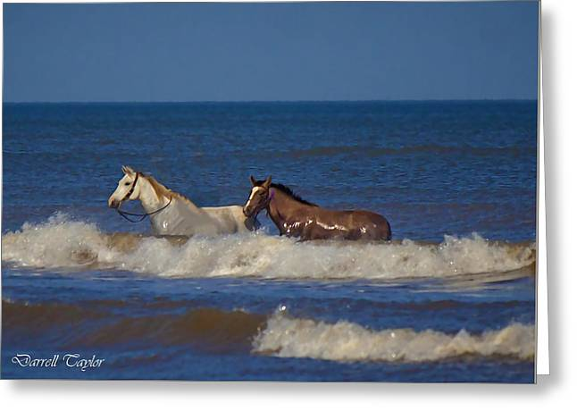Fine Art America Pic 117 Horses At Surfside Greeting Card