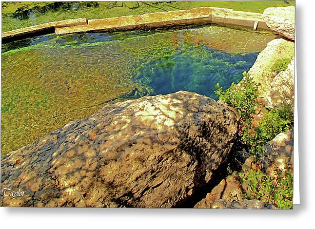Fine Art America Pic 121 Jacobs Well Close Up Greeting Card