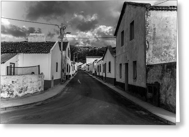 Greeting Card featuring the photograph Fine Art Back And White226 by Joseph Amaral