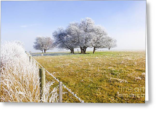 Fine Art Winter Scene Greeting Card by Jorgo Photography - Wall Art Gallery