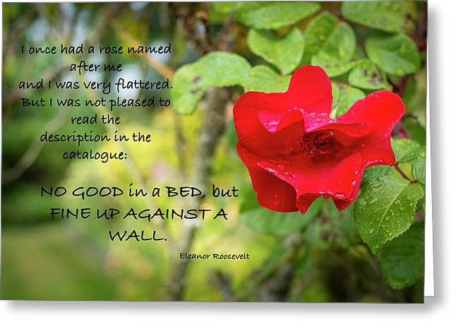 Fine Up Against A Wall Greeting Card by Mary Lee Dereske