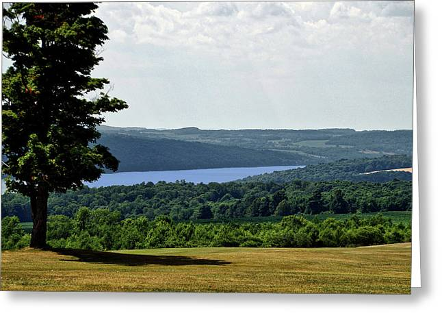 Finger Lakes New York Area In July Greeting Card
