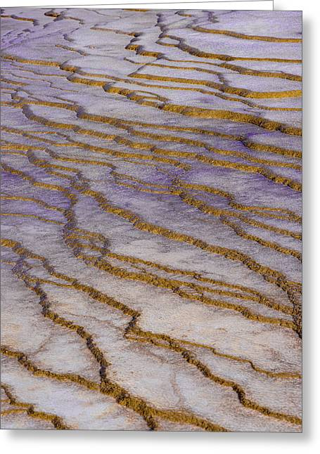 Greeting Card featuring the photograph Fingerprint Of The Earth by Jeffrey Jensen