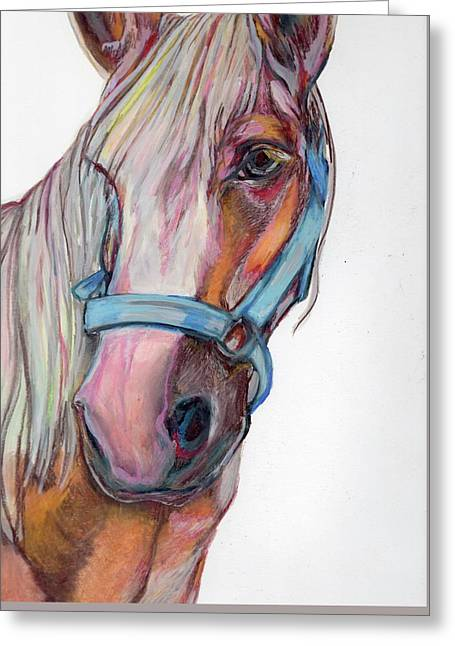 Finished Horse Greeting Card by Anne Seay