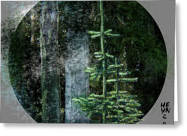 Fir Trees - 3 Ages Greeting Card by Shirley Heyn