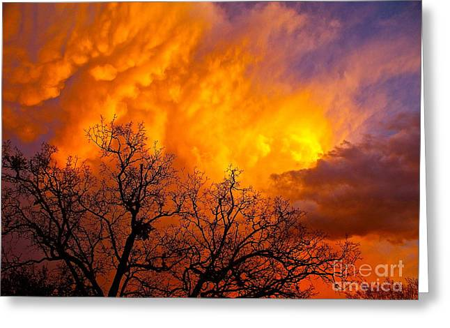 Fire And Water In The Sky Greeting Card by Chuck Taylor