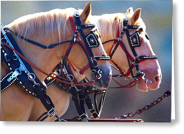 Fire Horses Greeting Card