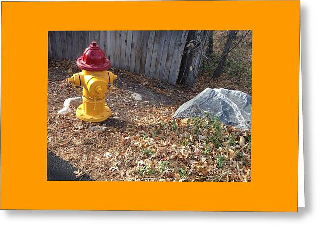 Greeting Card featuring the photograph Fire Hydrant Checking Its Facerock by Richard W Linford
