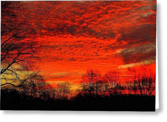Fire In The Sky Greeting Card by Aron Chervin