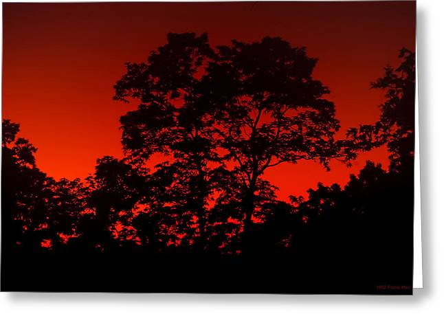 Fire In The Sky Greeting Card by Frank Mari