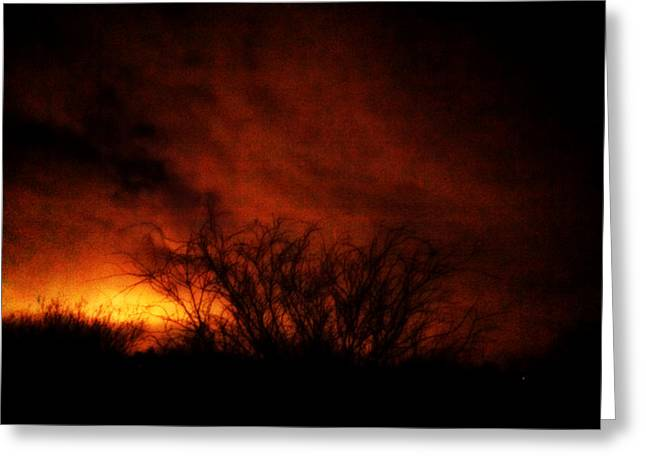 Fire In The Sky Greeting Card by Nature Macabre Photography