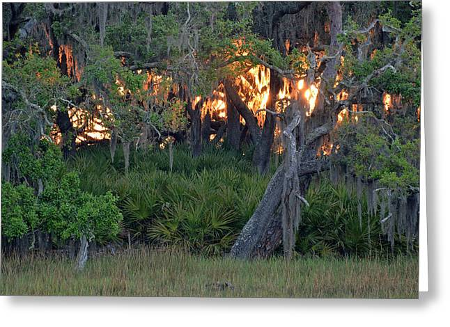 Greeting Card featuring the photograph Fire Light Jekyll Island 02 by Bruce Gourley
