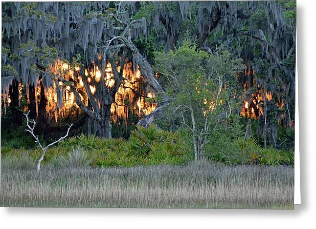 Greeting Card featuring the photograph Fire Light Jekyll Island by Bruce Gourley