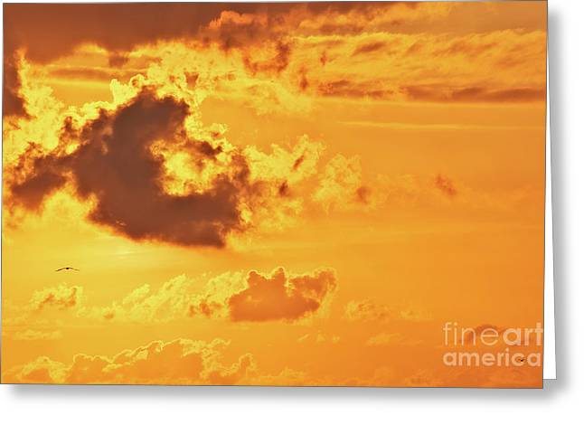 Fire On Sky Greeting Card by Angela Doelling AD DESIGN Photo and PhotoArt