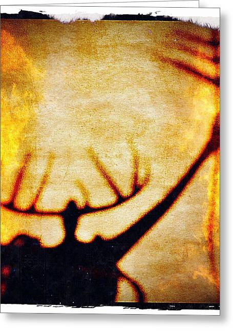 Greeting Card featuring the photograph Fire Shaman by Paul Cutright