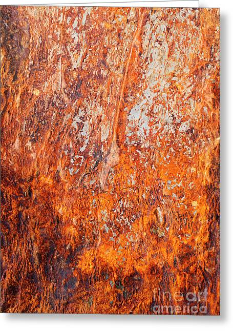 Fire Stone Greeting Card by Tim Gainey