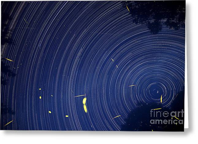 Fireflies And Sky Rotation Greeting Card by Ted Kinsman