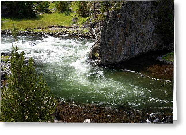 Firehole Canyon 1 Greeting Card by Marty Koch