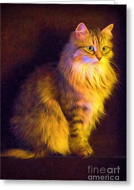 Fireside Feline Greeting Card