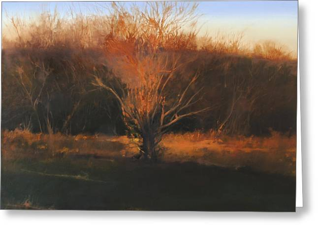 Greeting Card featuring the painting Fire Tree 2 by Cap Pannell