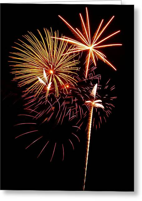 4th July Photographs Greeting Cards - Fireworks 1 Greeting Card by Michael Peychich