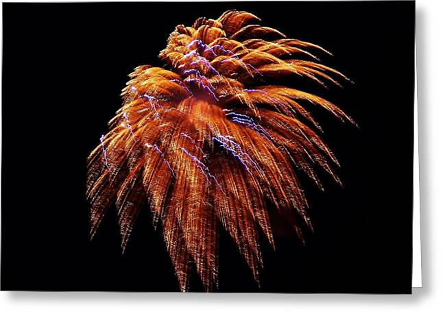 Fireworks Greeting Card by Stacie Gary
