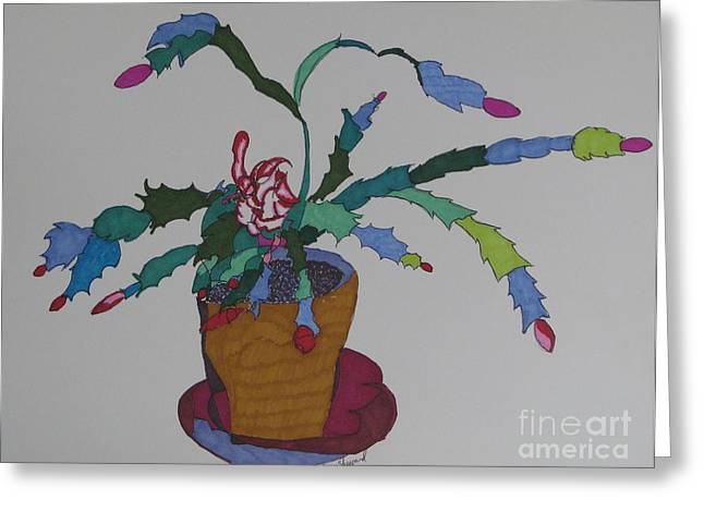 First Bloom Christmas Cactus Greeting Card by James SheppardIII