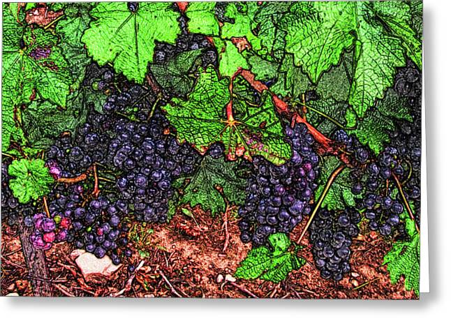 First Came The Grape Greeting Card