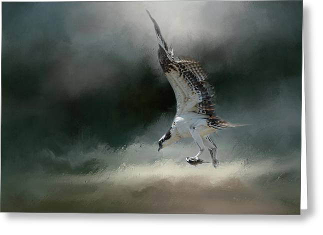 First Catch Of The Morning Osprey Art By Jai Johnson Greeting Card