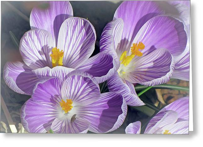 Greeting Card featuring the mixed media First Crocuses On The Sunny Side 6 by Lynda Lehmann