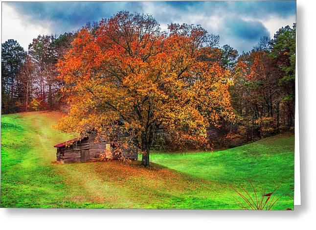 First Day Of Fall Greeting Card