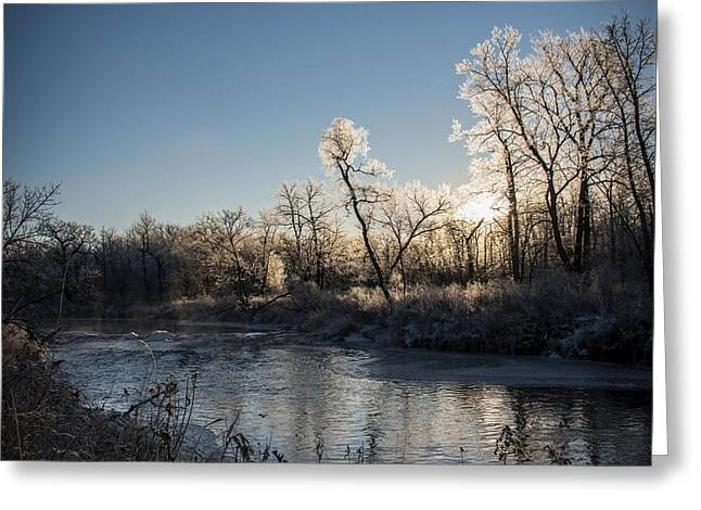 First Frost Greeting Card by Annette Berglund