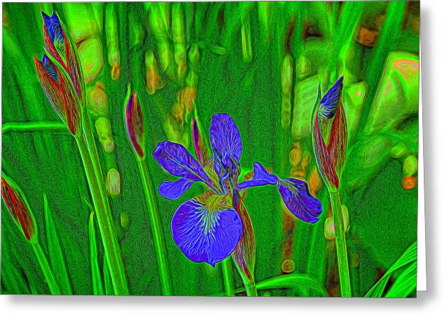 First Iris To Bloom Greeting Card by Dennis Lundell