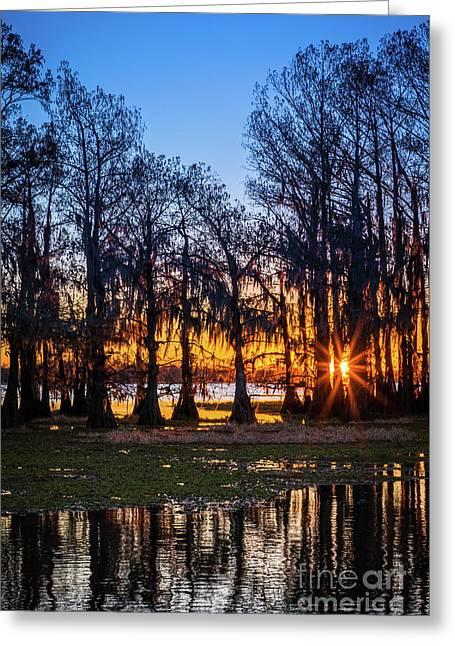 First Light At Caddo Lake Greeting Card