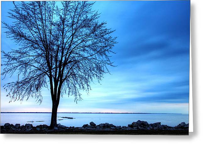 First Light Greeting Card by James Marvin Phelps