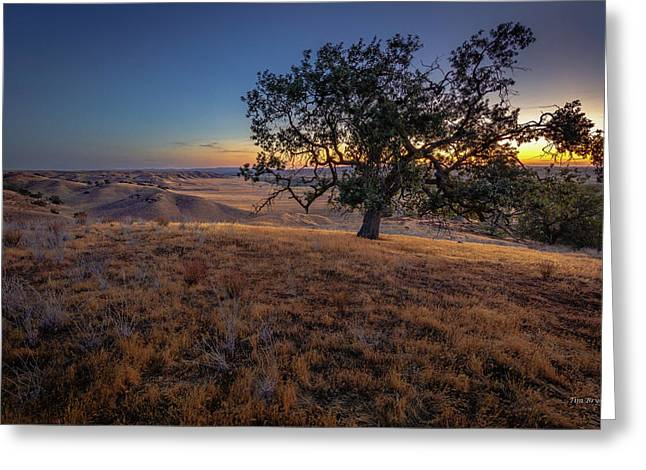 Greeting Card featuring the photograph First Light On The  Canyon Ranch by Tim Bryan