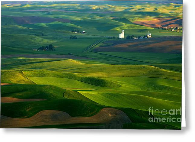 Rolling Hills Greeting Cards - First light on the Palouse Greeting Card by Mike  Dawson