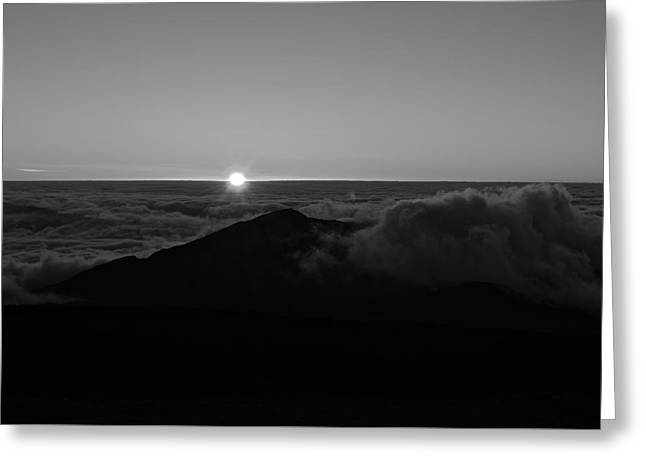 First Light Greeting Card by Tracey Myers